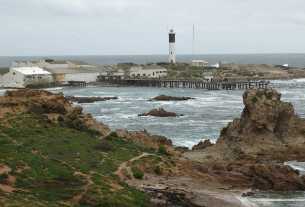 The harbour and lighthouse.