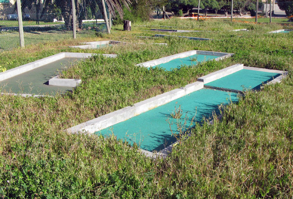 Old unkempt crazy golf course.