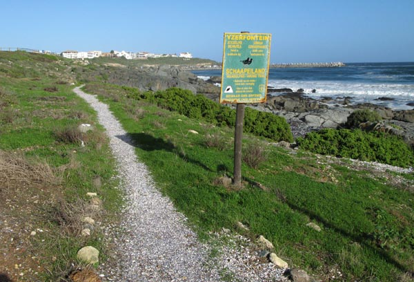 Walking trail along the coast.