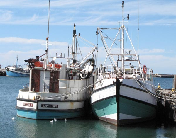 Fishing boats in the St Helena Bay harbour.