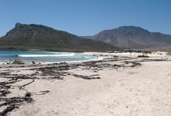 The beautiful main beach at Pringle Bay. Unfortunately as stated previously there had been massive seas that week and the beach was covered with kelp.
