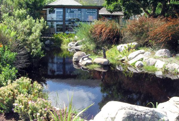 Harold Porter Gardens.