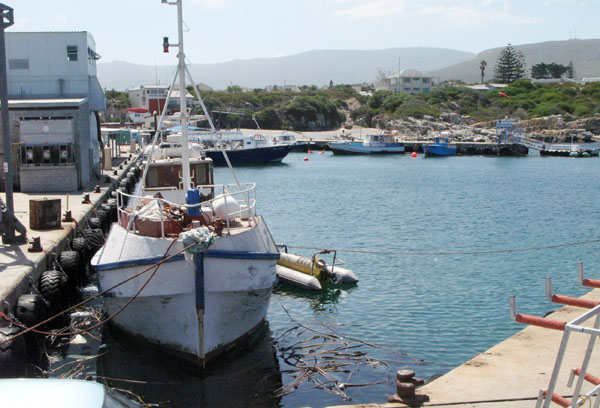 As a working harbour fishing trawlers are often moored along side the quay.