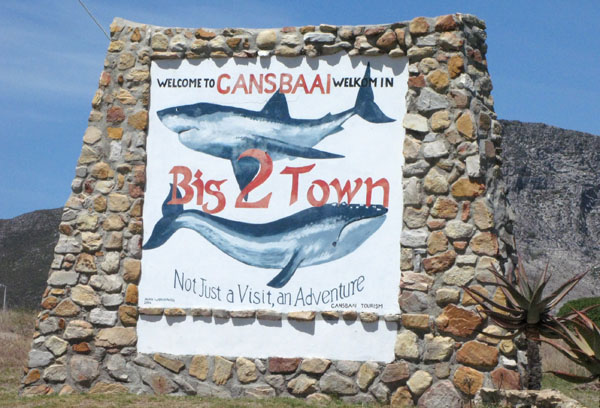 Welcom to Gansbaai