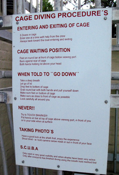 You want to make darn sure you  no the rules before you try cage diving if you want to keep all your limbs.