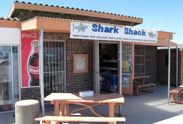 Or you could pop in here and buy some goodies here and tell all your friends how you went diving with the Great Whites.