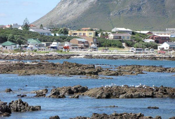 The rocky Danger Point shore line looking back towards Kleinbaai.